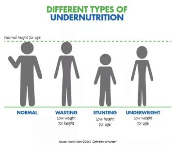 Different Types Of Under Nutrition
